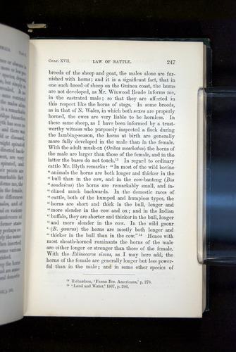 Image of Darwin-F937.2-1871-247
