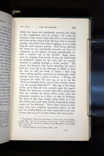 Image of Darwin-F937.2-1871-259