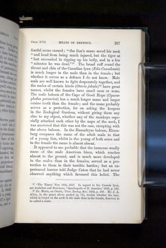 Image of Darwin-F937.2-1871-267