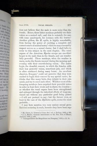 Image of Darwin-F937.2-1871-277