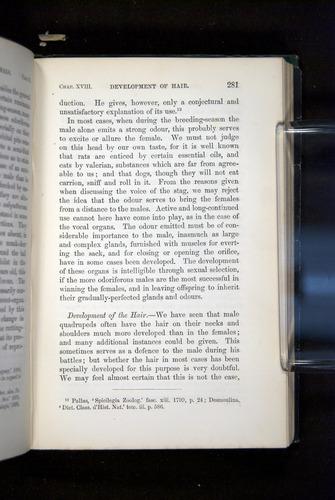 Image of Darwin-F937.2-1871-281
