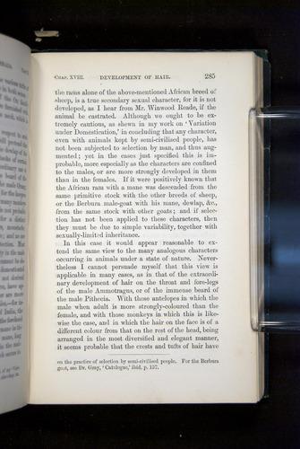 Image of Darwin-F937.2-1871-285