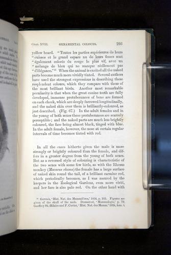 Image of Darwin-F937.2-1871-293