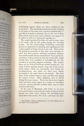 Image of Darwin-F937.2-1871-331