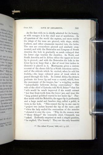Image of Darwin-F937.2-1871-341