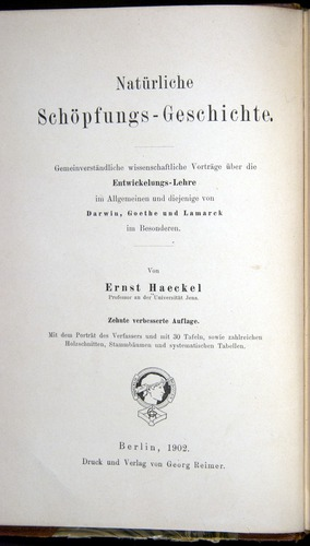 Image of Haeckel-1902-v1-36685