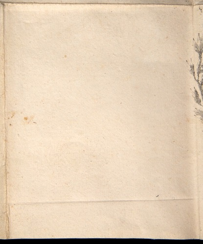 Image of Saulnier-1822-zzzz-det-090-p01r-sq22
