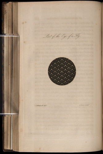 Image of Whitwell-1818-152-f08v