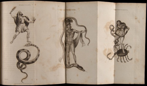 Image of Whitwell-1818-254-f13v