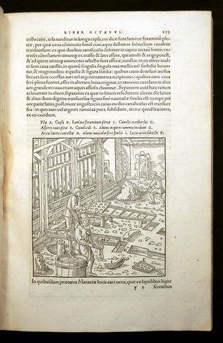 Image of Agricola-1556-255