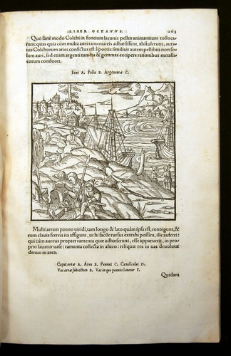 Image of Agricola-1556-263