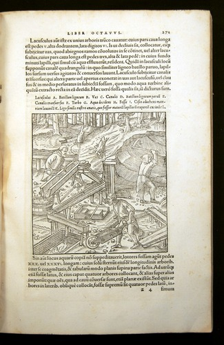 Image of Agricola-1556-271
