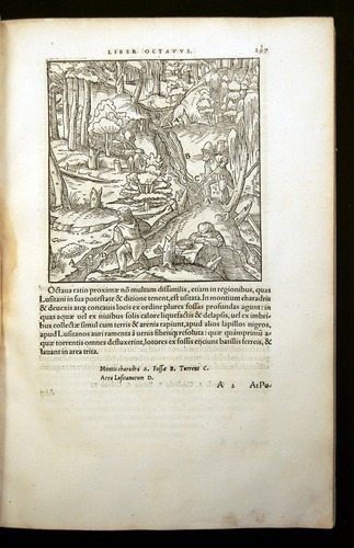 Image of Agricola-1556-279