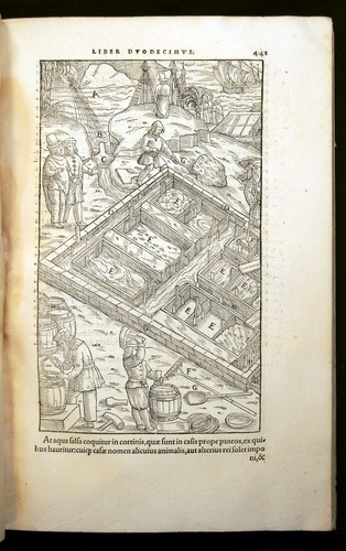 Image of Agricola-1556-441
