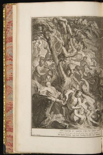 Image of Hoet-1728-009v-Gen8-12
