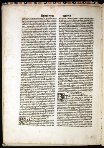 Image of MondinoDeiLuzzi-1507-004v