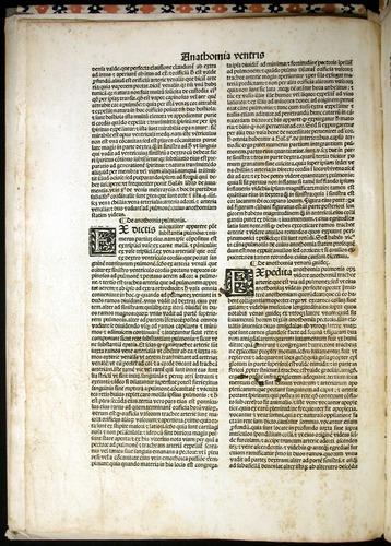 Image of MondinoDeiLuzzi-1507-008v