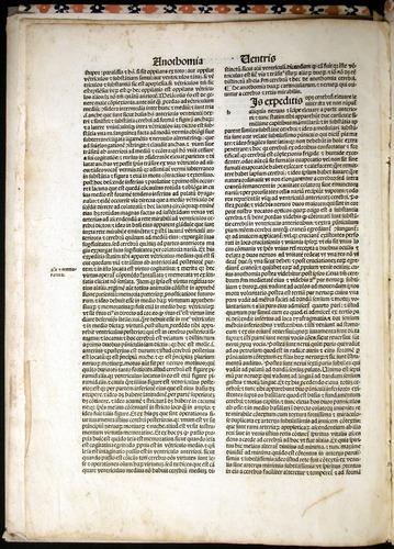 Image of MondinoDeiLuzzi-1507-010v