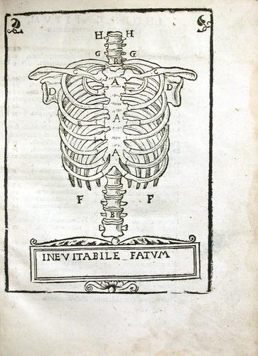 Image of MondinoDeiLuzzi-1541-a4r