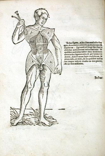 Image of MondinoDeiLuzzi-1541-c2v