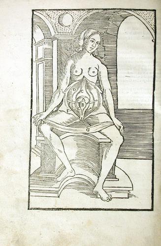 Image of MondinoDeiLuzzi-1541-i2v