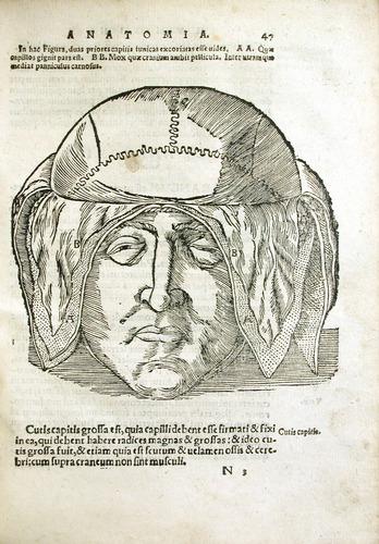 Image of MondinoDeiLuzzi-1541-n3r