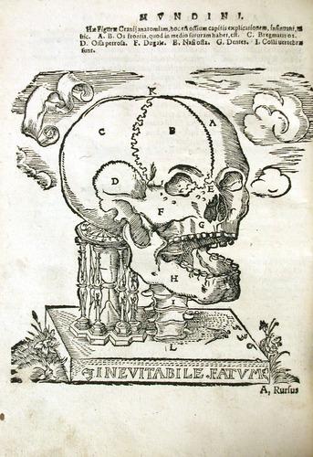 Image of MondinoDeiLuzzi-1541-n4v