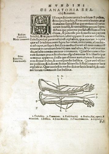 Image of MondinoDeiLuzzi-1541-q4v