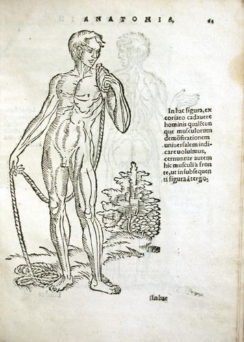 Image of MondinoDeiLuzzi-1541-r4r