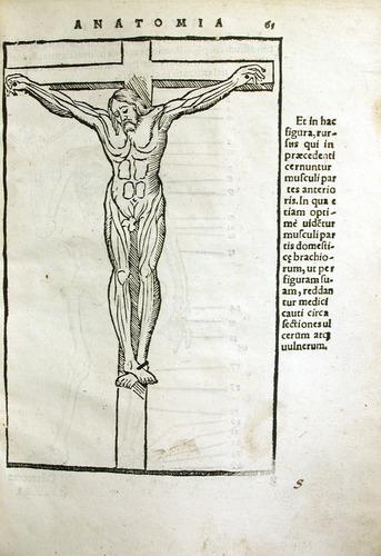 Image of MondinoDeiLuzzi-1541-s1r