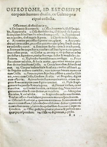 Image of MondinoDeiLuzzi-1541-s2r
