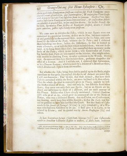 Image of Tyson-1751-042