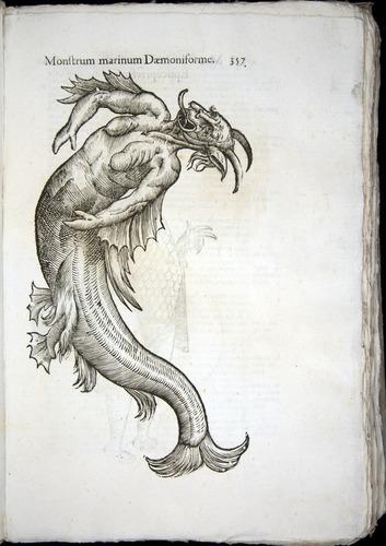 Image of Aldrovandi-1570-0357