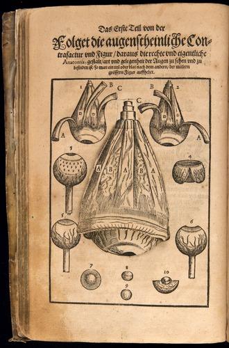 Image of Bartisch-1583-008v