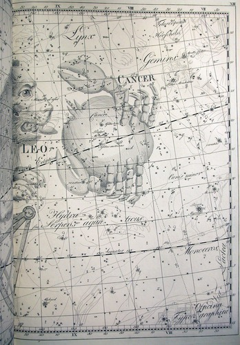 Image of Bode-1801-13-r
