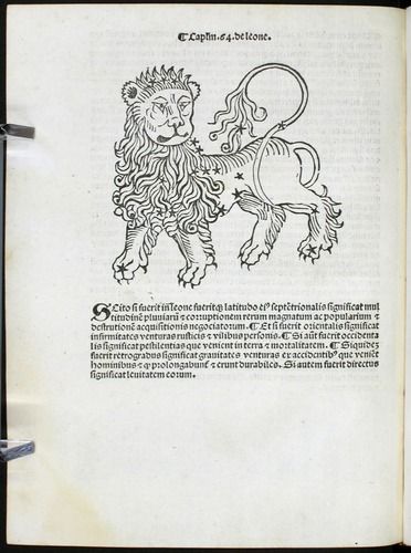 Image of Bonatti-1491-0K1v