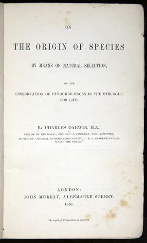Image of Darwin-F373-cop3-1859-000-tp2