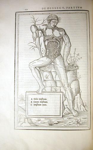 Image of Estienne-1545-l8v