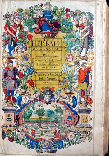 Image of Gerard-1597old-det-000-0tp