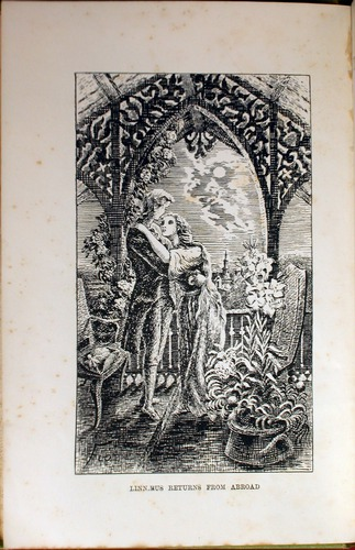 Image of Linne-Caddy-1887-Vol-2-fp