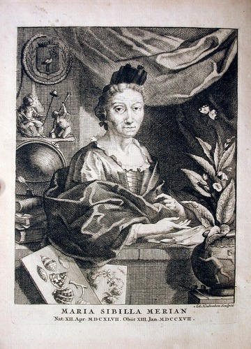 Image of Merian-1717-0Portrait