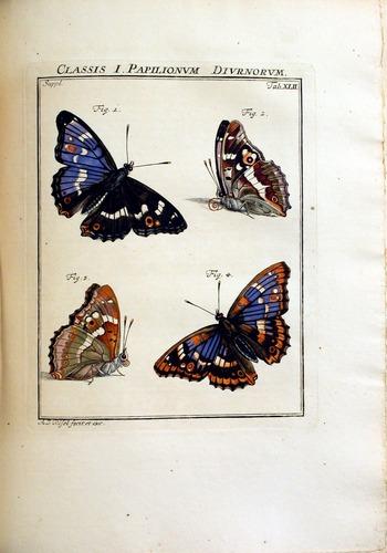 Image of Rosenhof-1788-3a-224-p