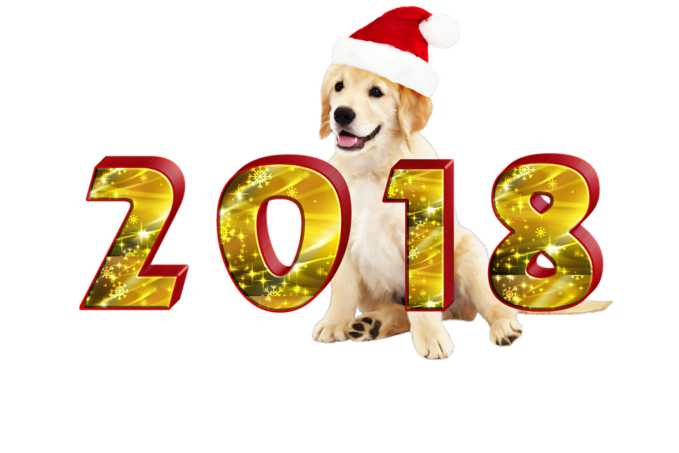 2018-year-of-the-dog