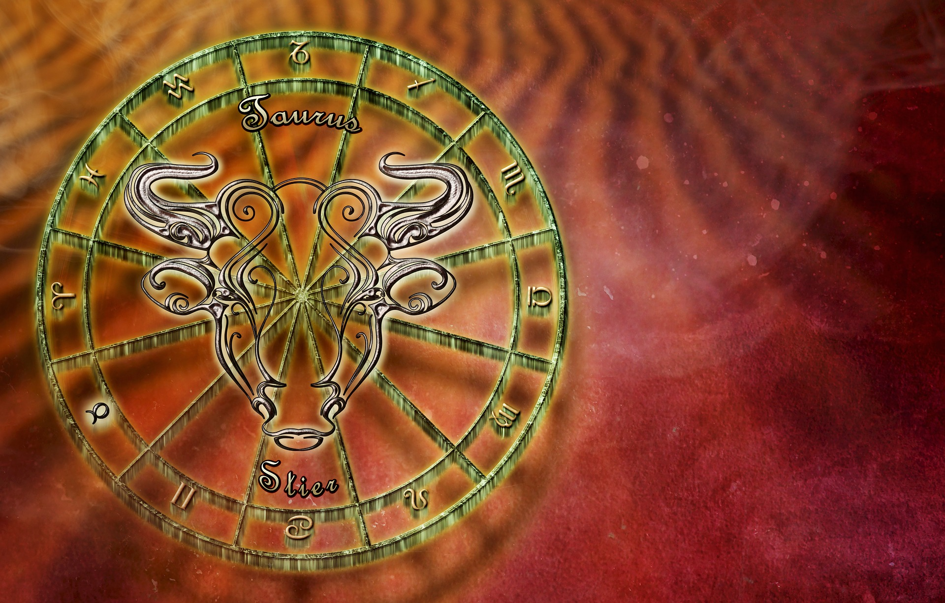 bull-2691107_1920