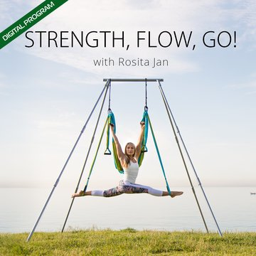 Level II Yoga Trapeze Digital Program & Free PDF Pose Chart - Strength, Flow, Go!