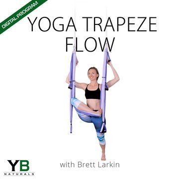 Yoga Trapeze Flow - Digital Program