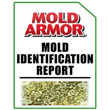 Mold Armor Test Kit – Mold Armor