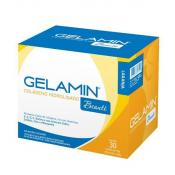 Gelamin 30 sachês 10g Advanced Nutrition