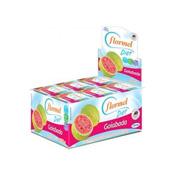 Goiabada Diet 24 tabletes Flormel