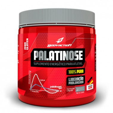 Palatinose 300g Body Action